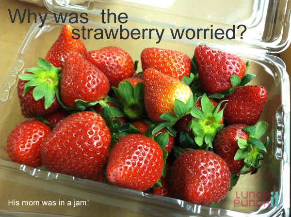 why was the strawberry worried