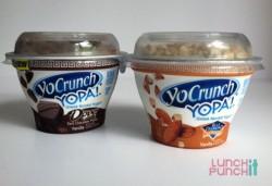 dannon greek yogurt   LunchItPunchIt.com